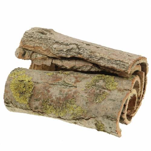 Corteza de árbol para manualidades natural 13cm 1kg
