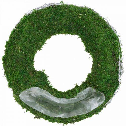 Anillo de planta de corona de musgo con enredaderas y verde musgo, blanco Ø35cm