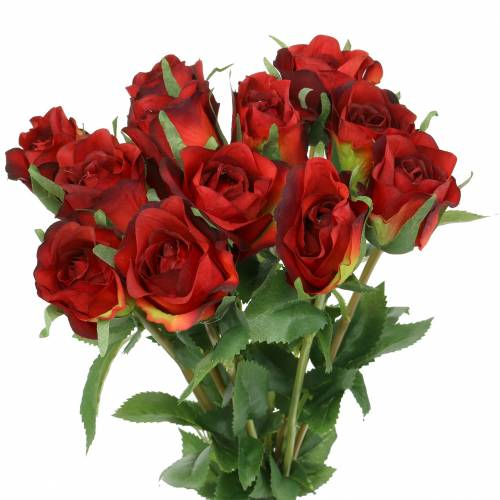 Rosa roja 42cm 12pcs