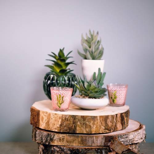 Vela de cera en cactus de vidrio Ø6,5cm 2pcs
