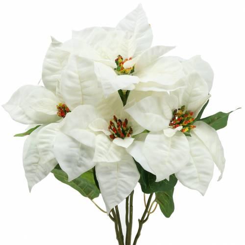 Poinsettia Ramo Blanco 52cm
