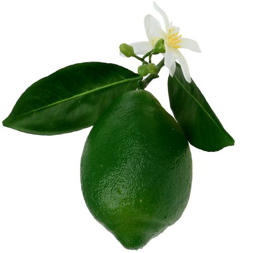 Limones con flor 9,5cm verde 4ud