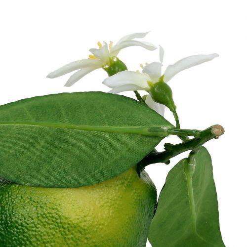 Limones con flor 9,5cm verde 4pcs