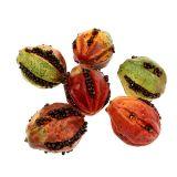 Frutas de otoño 3,5cm rojo, marrón 24pcs
